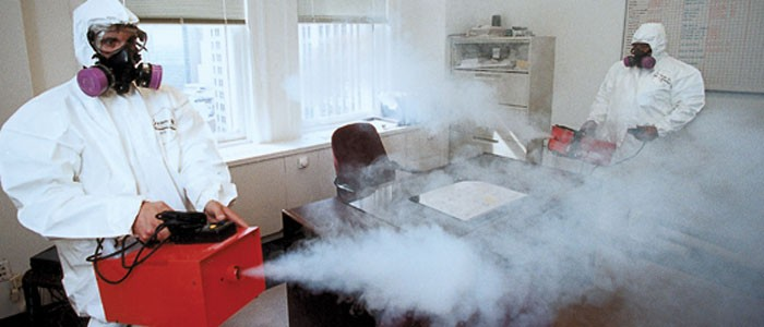 gta mold removal disinfection services