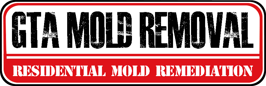 New Listing: GTA Mold Removal Mississauga