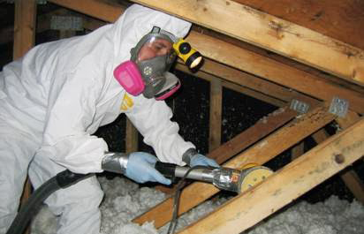 Mold Removal Company Serving Mississauga Amp Gta