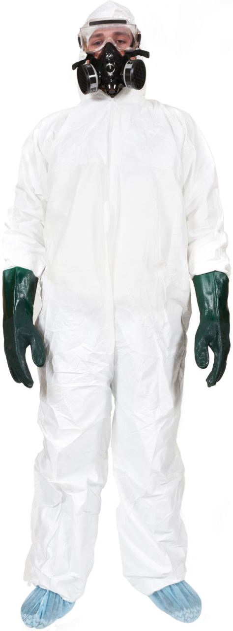 Mississauga Mold Removal Safety Wear